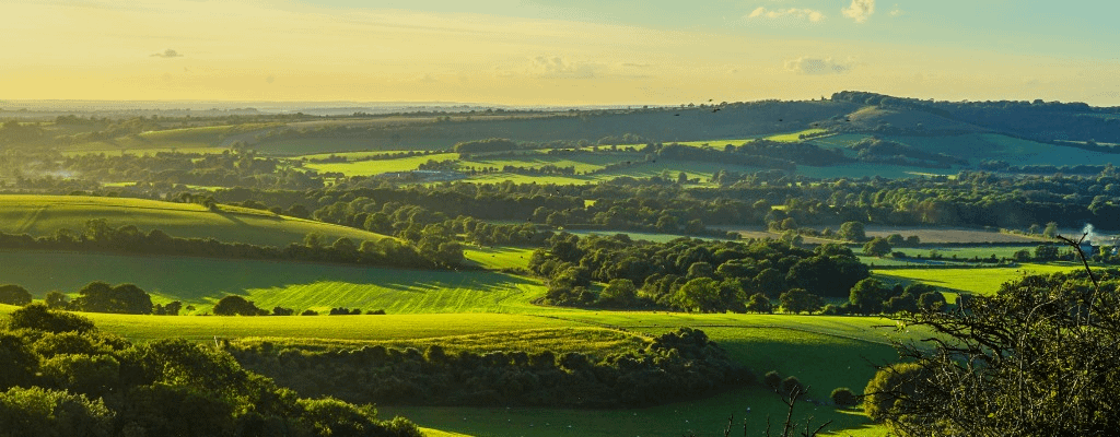 Walk Wichester Hill